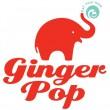 ginger pop