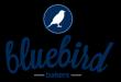 logo summer 2014 bluebird.png