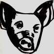 pig image md.jpg