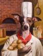 chef doggie.jpg