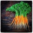 Carrot jpg .jpg