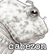 Cabezon-profile250x250.jpg